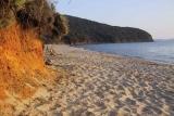 spiaggia-calaviolina11